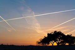 Solnedgång i dynerna Arkivfoton