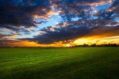 Solnedgång i Eastfrisia nära Aurich Oldendorf Royaltyfri Bild