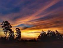 Solnedgång i en golfbana Kalifornien arkivfoto