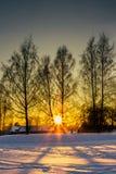 Solnedgång i en kall vinterdag Arkivbild