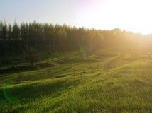 Solnedgång i ett fält på utkanten av byn Arkivfoto