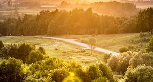 Solnedgång i fält arkivfoto