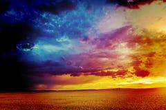 Solnedgång i fält i sommar Fotografering för Bildbyråer