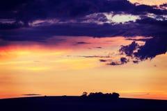 Solnedgång i fält i sommar Royaltyfri Foto