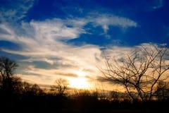 Solnedgång i fält med konturn för blå himmel och träd Royaltyfri Foto