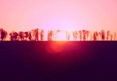 Solnedgång i fältet Arkivfoto