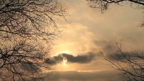 Solnedgång i Februari i natur stock video