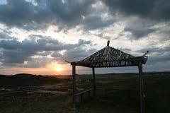 Solnedgång i grässlätt Royaltyfria Bilder