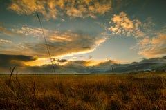 Solnedgång i höst över ett fält i Österrike arkivbild
