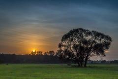 Solnedgång i höstaftonen Royaltyfria Bilder