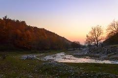 Solnedgång i höstskog med floden Arkivbild