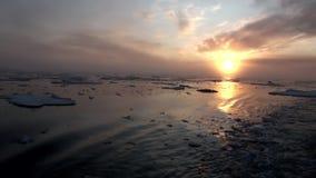 Solnedgång i havet bland isberg och is i arktisk stock video