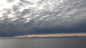 Solnedgång i havet bland isberg och is i arktisk lager videofilmer