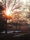 Solnedgång i Hilversum, Nederländerna arkivbild