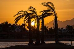 Solnedgång i Hurghada, Egypten Arkivbilder