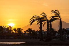 Solnedgång i Hurghada, Egypten Royaltyfria Foton