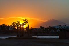 Solnedgång i Hurghada, Egypten Royaltyfria Bilder