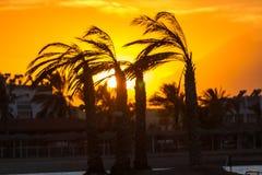 Solnedgång i Hurghada, Egypten Royaltyfri Foto