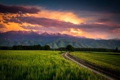Solnedgång i Kasakhstan arkivfoton