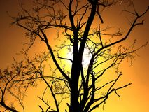Solnedgång i Kroatien royaltyfria bilder