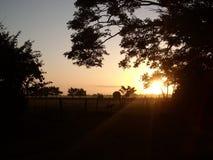 Solnedgång i Kuba II royaltyfri foto
