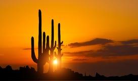 Solnedgång i mexikansk kanjon Fotografering för Bildbyråer