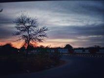 Solnedgång i moln med trädrörelse royaltyfria bilder