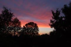 Solnedgång i naturen Arkivbild