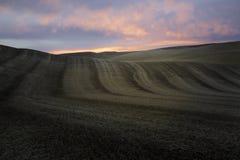 Solnedgång i Palousen Royaltyfri Foto
