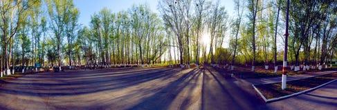 Solnedgång i parkera Arkivbild