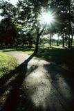 Solnedgång i parkera Royaltyfri Fotografi