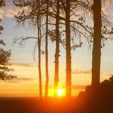 Solnedgång i parkera Arkivbilder