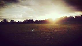 Solnedgång i parkerastadfältet Royaltyfri Foto