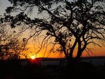 Solnedgång i Porto Alegre, Brasilien royaltyfria foton