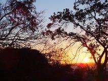 Solnedgång i Porto Alegre, Brasilien royaltyfri foto