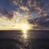 Solnedgång i Puerto Rico Royaltyfri Fotografi