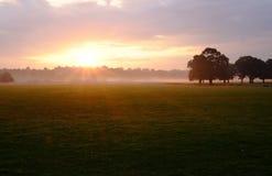 Solnedgång i Richmond Park arkivfoton
