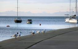Solnedgång i sjösidastaden Gå vid pir arkivfoto