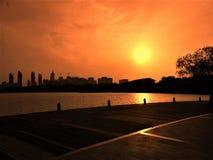 Solnedgång i staden royaltyfria bilder