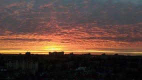 Solnedgång i stadsskyscarpersikten Royaltyfria Bilder