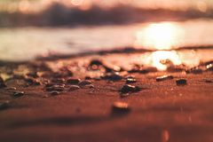 Solnedgång i stranden royaltyfri bild