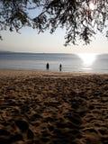 Solnedgång i Timor royaltyfria bilder