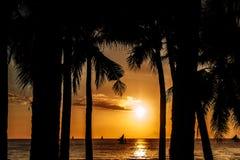 Solnedgång i tropiskt land gömma i handflatan silhouettetrees thailand Arkivfoton