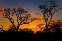 Solnedgång i Tsodilo kullar Royaltyfria Bilder