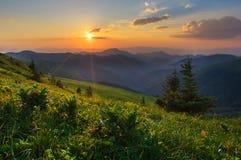Solnedgång i Velka Fatra berg Arkivbild