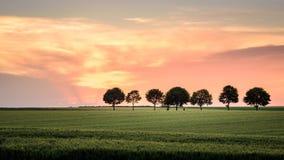 solnedgång i vetefälten nära paris Royaltyfria Bilder