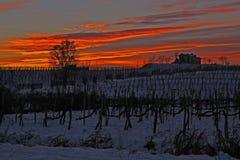Solnedgång i vinter Arkivfoton