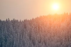 Solnedgång i vinterbergen Fotografering för Bildbyråer
