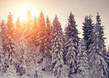 Solnedgång i vinterbergen Royaltyfri Bild