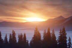 Solnedgång i vinterbergen Arkivfoton